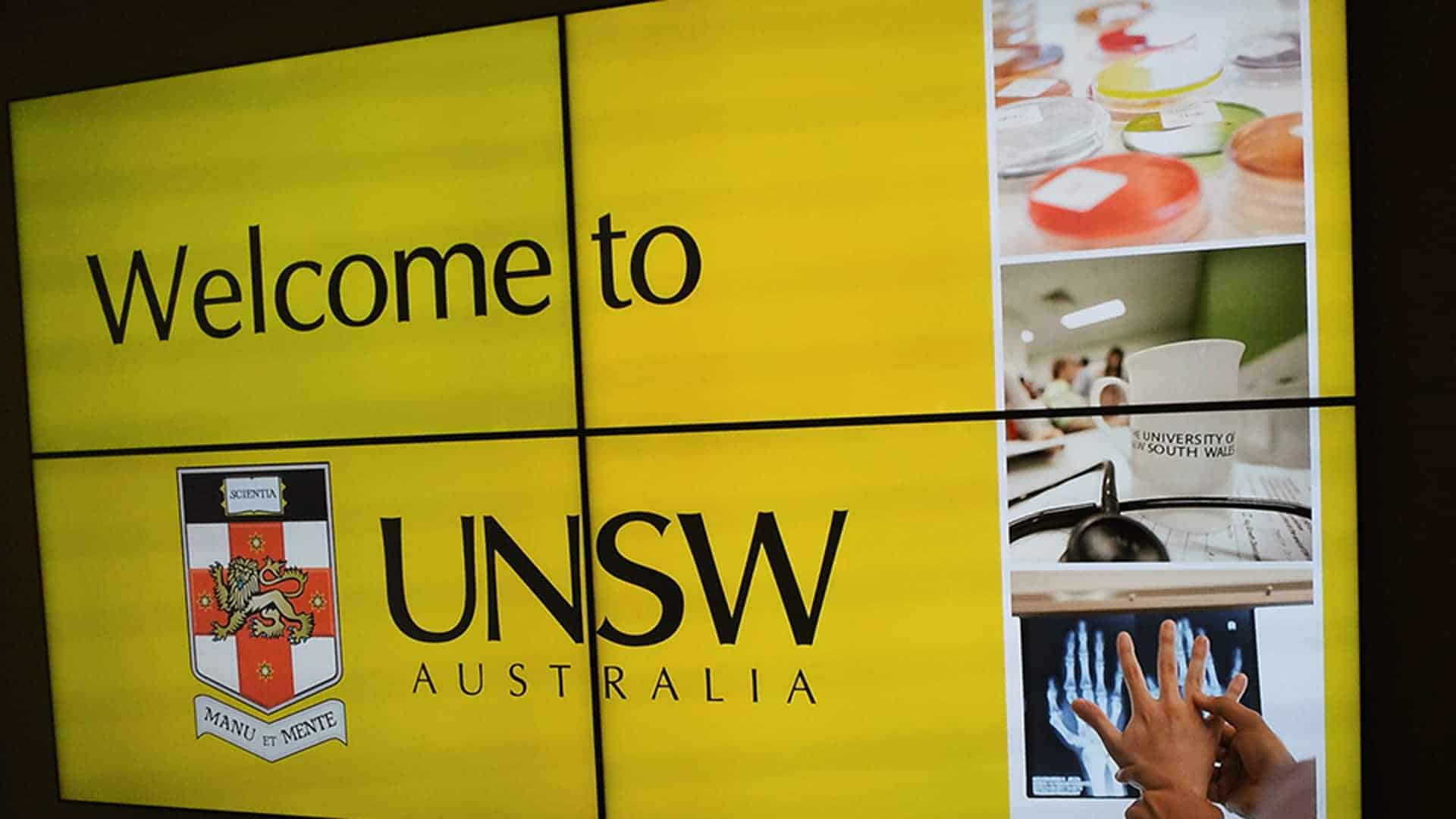 Video Wall Videowall UNSW Faculty of Medicine